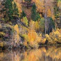 Золотая осень по берегам озера :: Екатерина Торганская