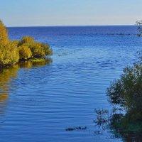 Исток  реки Веряжа. :: Sergey Serebrykov
