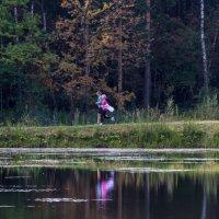 Осенних красок отраженья.... :: Yuri Chudnovetz