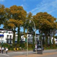 Позолотила осень деревьев кроны :: Nina Yudicheva