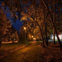 Вечерний город :: vladimir Bormotov