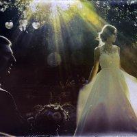Луч света в темном царстве :: Tatiana Poliakova