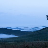 Туман :: Марина Кириллова