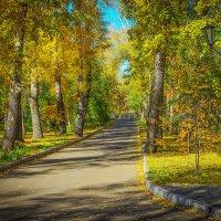 Осенняя аллея в городе :: юрий Амосов