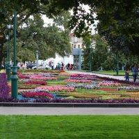 Парк в сентябре :: Ирина Сивовол