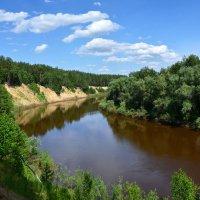 Река  Тара :: Геннадий С.