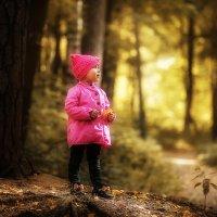 Осень :: Евгения Вереина
