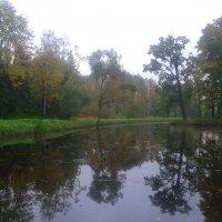 Осенний туман :: Сапсан
