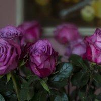 Розы..... :: Julia Korzunova