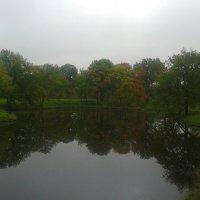 Кузьминка осенью :: Сапсан