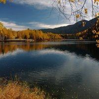 Осень наступила и вода остыла... :: Александр Попов