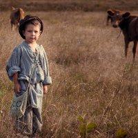 Пастушок :: Майя Морозова