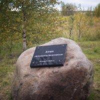 Камень :: Наталья Копылова