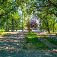 Летний день в тени старого парка. :: Вахтанг Хантадзе