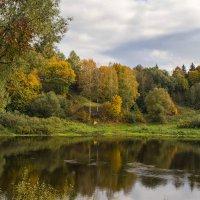 р.Западная Двина. :: Елена Струкова