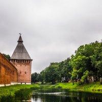Ров и Копытенская башня :: Ruslan