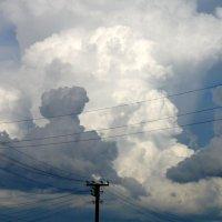 небо и провода :: павел бритшев