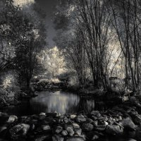 Река и пруд :: Константин Ощепков