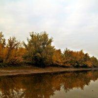 Пейзаж :: Татьяна Королёва