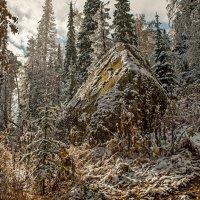 И падал осенний снег... :: Сергей Герасимов