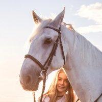 Любовь к лошадкам :: Ева Олерских