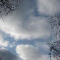 облака :: Зинаида
