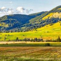 альпийская песня :: Дмитрий Карышев