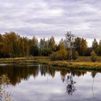 Сентябрь... природа чуточку грустит... :: Оксана Галлямова