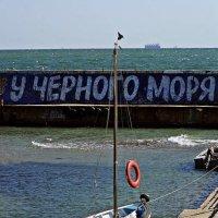 у Черного моря :: Александр Корчемный