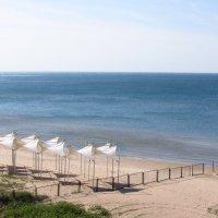 паруса на фоне нежного, Черного моря :: Варвара Маевская