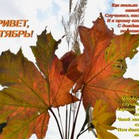 С началом октября! :: Татьяна Помогалова