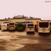 Автовокзал и автобусы :: Сашко Губаревич