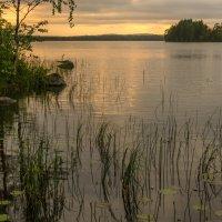 Явление солнца после трех суток дождя :: Владимир Брагилевский