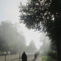 Утро туманное 2. :: Михаил Попов