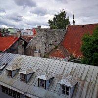 Прогулка по крышам Таллина :: Alex