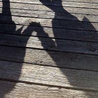 Неразлучны даже тени :: Валерий Розенталь