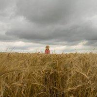 Природа :: Татьяна Бочок