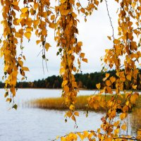 Озера остывают, готовятся к зиме :: Роман Дудкин