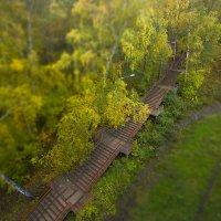 Лестница в осень :: Alex Dushutin