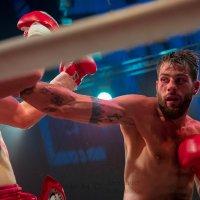 Спорт и ринг :: Александр Колесников