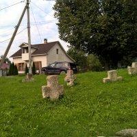 Жальничий могильник посреди деревни :: Марина Домосилецкая
