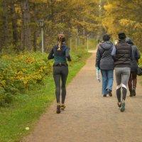 Осенний марафон :: cfysx