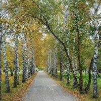 осень :: Dmitry i Mary S