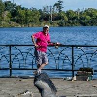 Спешит за брошенной рыбкой (Хай Парк, Торонто, Канада) :: Юрий Поляков