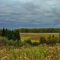Природа в сентябре... :: марк