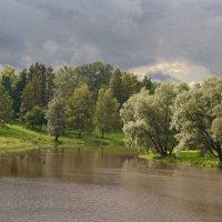 Возможен дождь :: Олег Попков