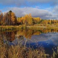 Осенняя зарисовка. :: Геннадий Северный