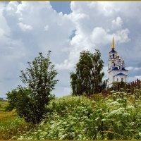 Июльский зной, перед ливнем. :: Сергей l