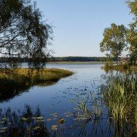 Озеро :: Олег Ранц
