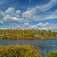 Осень на реке :: Александр Смирнов